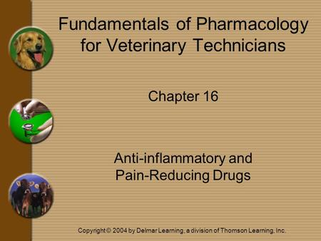Copyright © 2004 by Delmar Learning, a division of Thomson Learning, Inc. Fundamentals of Pharmacology for Veterinary Technicians Chapter 16 Anti-inflammatory.