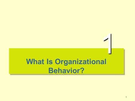1 What Is Organizational Behavior? 1. 2 The Importance of Interpersonal Skills Understanding OB helps determine manager effectiveness –Technical and quantitative.