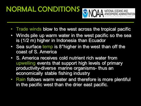Blow to the west across the tropical pacificTrade winds blow to the west across the tropical pacific Winds pile up warm water in the west pacific so the.