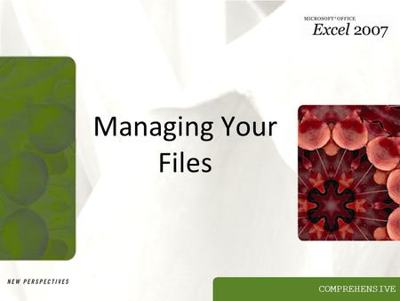 COMPREHENSIVE Managing Your Files. XP Objectives Develop file management strategies Explore files and folders Create, name, copy, move, and delete folders.