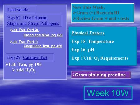 Week 10W New This Week: Last week: Gram (+) Bacteria ID