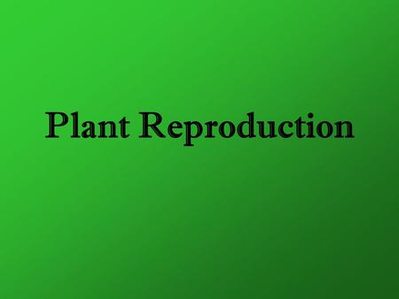 Plant Reproduction. Two Forms of Plant Reproduction Sexual Reproduction Asexual Reproduction Meiosis + Fertilization Mitosis + Vegetative Propagation.