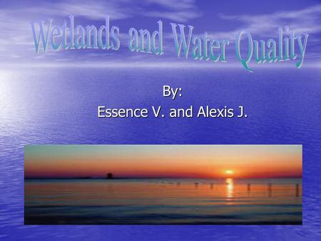 By: Essence V. and Alexis J.. An area of land that is sometimes underwater or whose soil contains a great deal of moisture, is called wetlands An area.