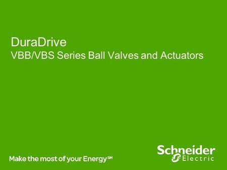 Business Vision DuraDrive VBB/VBS Series Ball Valves and Actuators.