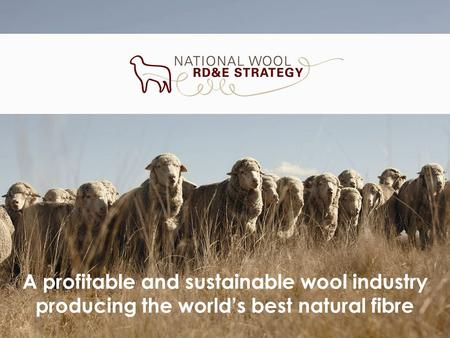 A profitable and sustainable wool industry producing the worlds best natural fibre.