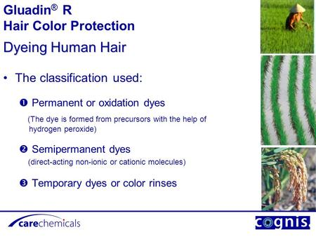 Dyeing Human Hair Gluadin® R Hair Color Protection