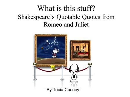 What is this stuff? Shakespeare's Quotable Quotes from Romeo and Juliet By Tricia Cooney.