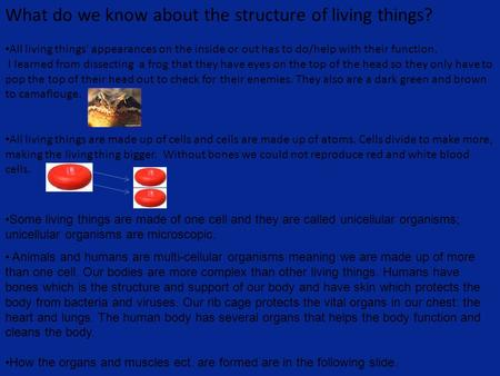 What do we know about the structure of living things?