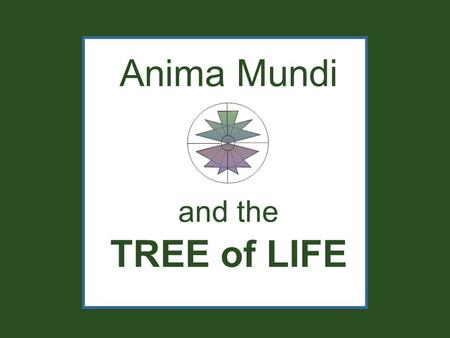 Anima Mundi and the TREE of LIFE. WATER EARTHAIR FIRE The ancient model called the Anima Mundi is made up of Four Elements.