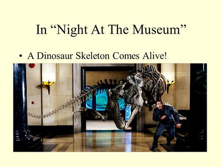 In Night At The Museum A Dinosaur Skeleton Comes Alive!