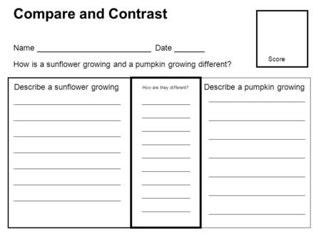 Compare and Contrast How are they different? Describe a sunflower growing Name __________________________ Date _______ How is a sunflower growing and a.