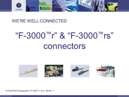 © DIAMOND Headquarters / F-3000 r & rs / 09-08 / 1 WERE WELL CONNECTED F-3000 r & F-3000 rs connectors.