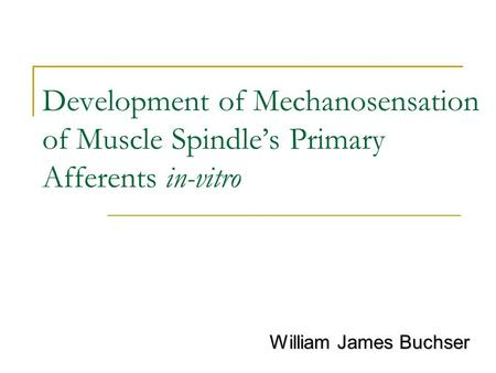 Development of Mechanosensation of Muscle Spindle's Primary Afferents in-vitro William James Buchser.