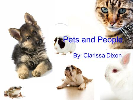 Pets and People By: Clarissa Dixon.