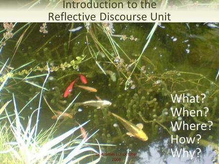 Dr A James LCF October 2008 Introduction to the Reflective Discourse Unit What? When? Where? How? Why?