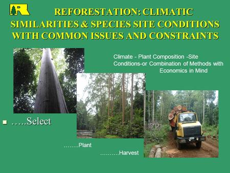 REFORESTATION: CLIMATIC SIMILARITIES & SPECIES SITE CONDITIONS WITH COMMON ISSUES AND CONSTRAINTS REFORESTATION: CLIMATIC SIMILARITIES & SPECIES SITE CONDITIONS.