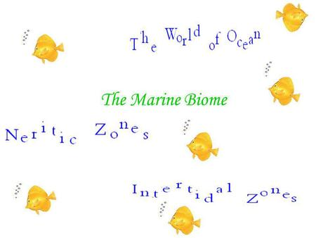 The Marine Biome. ThE wOrLd OcEaN All the oceans of the world connect and make up one large body of water. This large body of water is called the world.