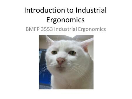 Introduction to Industrial Ergonomics BMFP 3553 Industrial Ergonomics.