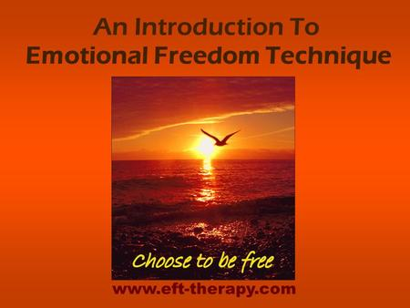 An Introduction To Emotional Freedom Technique www.eft-therapy.com.
