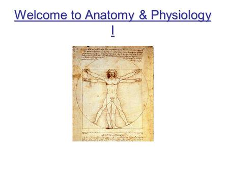 Welcome to Anatomy & Physiology I. Syllabus Grades –25% homework –25% exams –25% final exam –25% participation Assignments and Tests – should be turned.