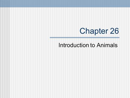 Chapter 26 Introduction to Animals. Characteristics of Animals There are 3 general features of animals which all animals share: All animals are multicellular.