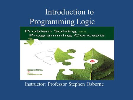 Introduction to Programming Logic Instructor: Professor Stephen Osborne.