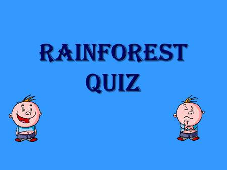Rainforest quiz Question 1 Which of these is not the name for a rainforest layer? A Canopy B Forest floor C Trees and shrubs D Emergent.