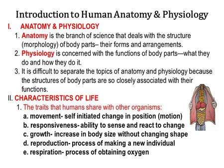 Introduction to Human Anatomy & Physiology I.ANATOMY & PHYSIOLOGY 1. Anatomy is the branch of science that deals with the structure (morphology) of body.