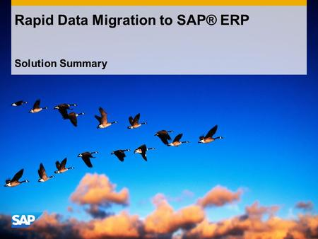 Solution Summary Rapid Data Migration to SAP® ERP.