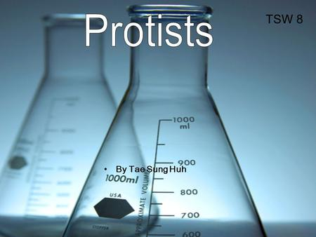 By Tae Sung Huh TSW 8. What is protist? Protists are eukaryotics. kingdom Protista, mostly classified by how they move –Protists –fungus-like –plant-like.