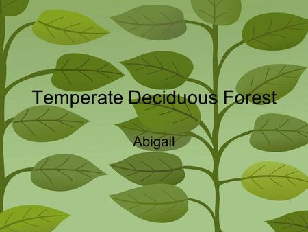 Temperate Deciduous Forest Abigail Climate and Location Temperate Deciduas Forests are located in North America, South America, Asia and even Europe.