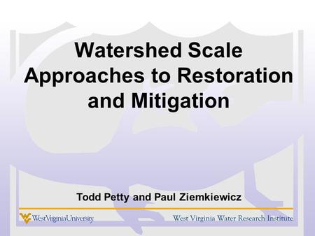 Watershed Scale Approaches to Restoration and Mitigation Todd Petty and Paul Ziemkiewicz.