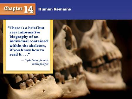 Chapter 12 Human Remains Kendall/Hunt.