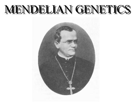 MENDELIAN GENETICS. GARDEN PEAS Advantages seeds easy to obtain characters easy to score crosses easily controlled short generation time large numbers.