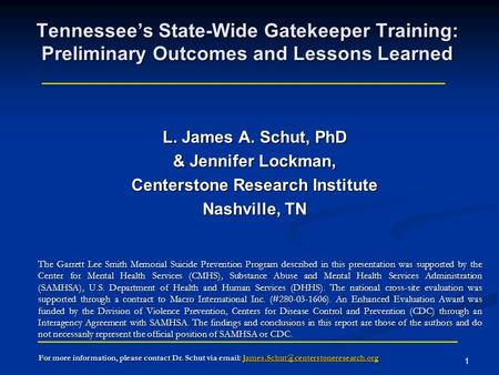 1 Tennessees State-Wide Gatekeeper Training: Preliminary Outcomes and Lessons Learned L. James A. Schut, PhD & Jennifer Lockman, Centerstone Research Institute.