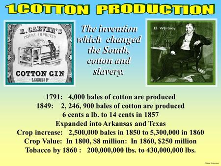 1791: 4,000 bales of cotton are produced 1849: 2, 246, 900 bales of cotton are produced 6 cents a lb. to 14 cents in 1857 Expanded into Arkansas and Texas.