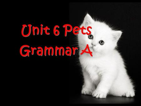 Unit 6 Pets Grammar A. You must know something about dogs, cats, parrots and goldfish. Can you describe them?