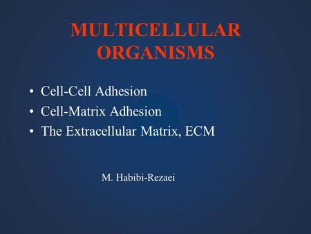 MULTICELLULAR ORGANISMS Cell-Cell Adhesion Cell-Matrix Adhesion The Extracellular Matrix, ECM M. Habibi-Rezaei.