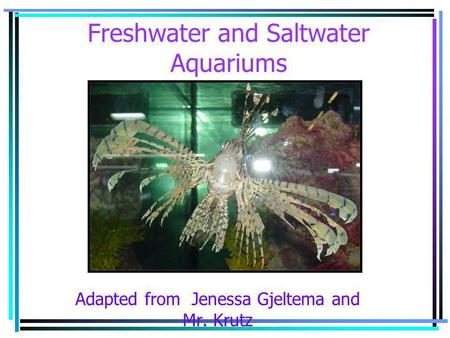 Freshwater and Saltwater Aquariums Adapted from Jenessa Gjeltema and Mr. Krutz.
