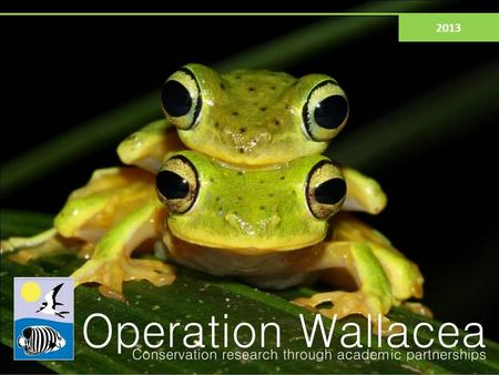 2013. What is Operation Wallacea? Tropical scientific expeditions in 9 countries 170+ academics running more than 120 projects Results published in peer-reviewed.