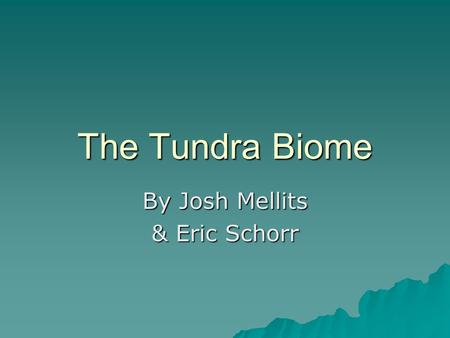 The Tundra Biome By Josh Mellits & Eric Schorr. What is a tundra? Vast, nearly level, treeless plains of the arctic regions of Europe, Asia, and North.