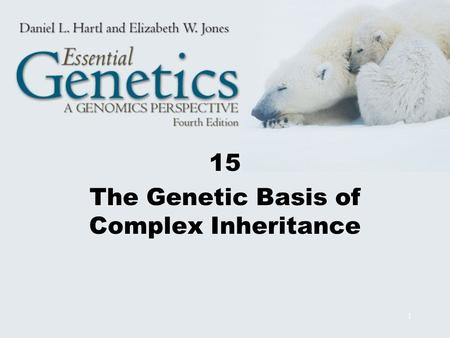 1 15 The Genetic Basis of Complex Inheritance. 2 Multifactorial Traits Multifactorial traits are determined by multiple genetic and environmental factors.