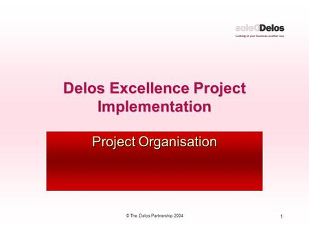 1 © The Delos Partnership 2004 Delos Excellence Project Implementation Project Organisation.