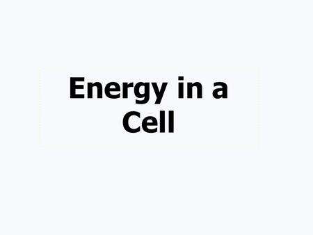 Energy in a Cell Terms Chemosynthetic Organisms that obtain cellular energy by breaking down inorganic chemicals Autotroph creates their own food through.