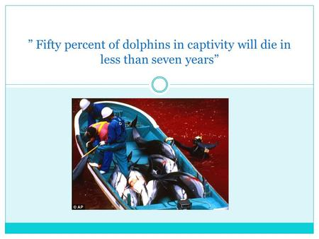 Fifty percent of dolphins in captivity will die in less than seven years.