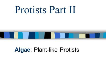 Protists Part II Algae: Plant-like Protists. A. Euglenoids 1. Example: Euglena 2. Traits similar to plants: a. cell wall b. Chlorophyll 3. Traits similar.