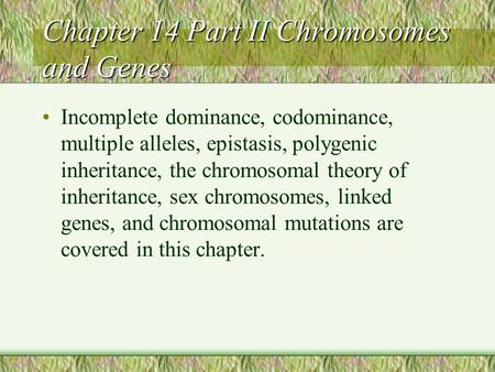 Chapter 14 Part II Chromosomes and Genes Incomplete dominance, codominance, multiple alleles, epistasis, polygenic inheritance, the chromosomal theory.