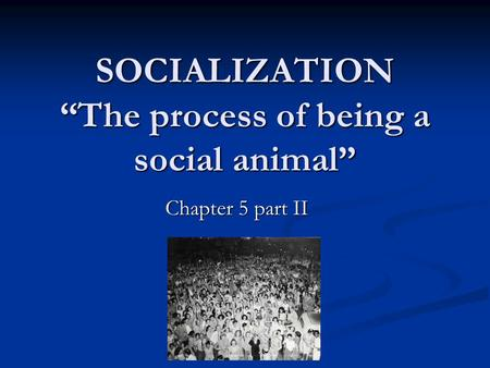 SOCIALIZATION The process of being a social animal Chapter 5 part II.