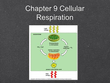 Chapter 9 Cellular Respiration. Energy Production Part of Chapter 9 deals with the catabolic pathways that break down organic molecules for the production.