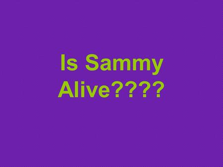Is Sammy Alive????. Sammy was a normal, healthy boy. There was nothing in his life to indicate that he was anything different from anyone else. When he.